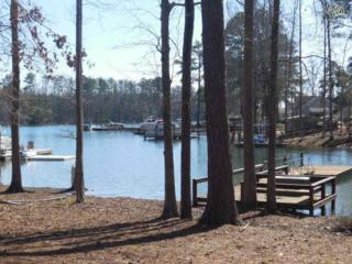 201  Stoney Pointe Drive  , Chapin, SC 29036 (MLS #372738) :: Exit Real Estate Consultants
