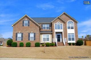206  Southberry Lane  , Lexington, SC 29072 (MLS #373052) :: Exit Real Estate Consultants