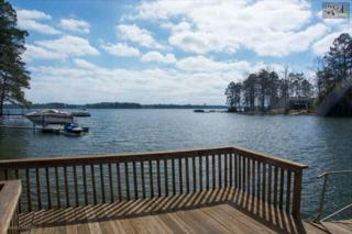 168  Rum Gully Lane  , Chapin, SC 29036 (MLS #373135) :: Exit Real Estate Consultants