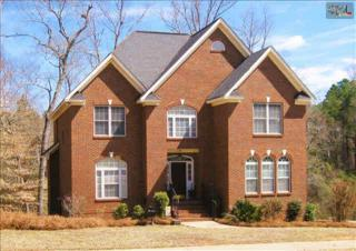 106  Land Stone Circle  , Irmo, SC 29063 (MLS #373344) :: Exit Real Estate Consultants