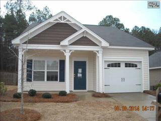 219  Ridge Terrace Lane  , Lexington, SC 29073 (MLS #373508) :: Exit Real Estate Consultants