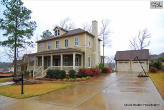 906  Battenkill Court  , Lexington, SC 29072 (MLS #373612) :: Exit Real Estate Consultants