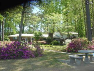 211  Lost Spring Road  , Lexington, SC 29072 (MLS #373708) :: Exit Real Estate Consultants