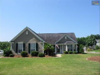 401  Farmhouse Loop  , Lexington, SC 29072 (MLS #373723) :: Exit Real Estate Consultants