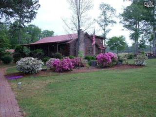 2780  Old Charleston Road  , Gilbert, SC 29054 (MLS #373786) :: Exit Real Estate Consultants