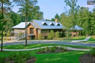 611  Bimini Twist Circle  , Lexington, SC 29072 (MLS #373862) :: Exit Real Estate Consultants