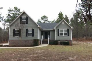 213  Cedar Branch Court  , Gilbert, SC 29054 (MLS #373891) :: Exit Real Estate Consultants