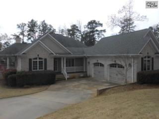 512  Ramblewood Lane  , Chapin, SC 29036 (MLS #373927) :: Exit Real Estate Consultants