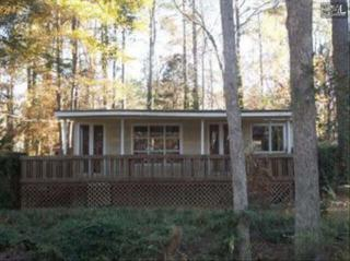 907  Green Meadow Drive  , Chapin, SC 29036 (MLS #373989) :: Exit Real Estate Consultants