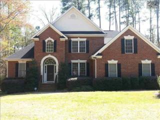 108  Pointe Overlook Drive  , Chapin, SC 29036 (MLS #374002) :: Exit Real Estate Consultants