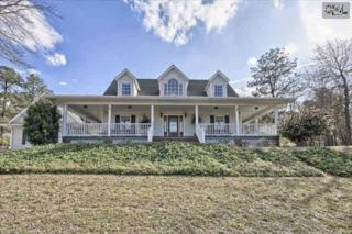 276  Hayes Crossing Road  , Gilbert, SC 29054 (MLS #374052) :: Exit Real Estate Consultants