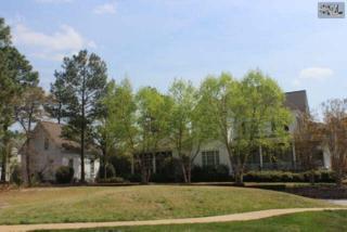 103  Lake Carolina Boulevard  , Columbia, SC 29229 (MLS #374087) :: Exit Real Estate Consultants