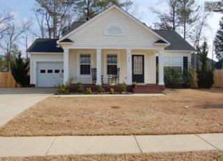 420  Whitewater Drive  , Irmo, SC 29063 (MLS #374175) :: Exit Real Estate Consultants
