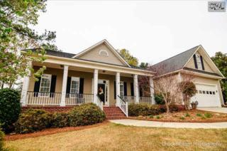 304  Genessee Road  , Irmo, SC 29063 (MLS #374220) :: Exit Real Estate Consultants
