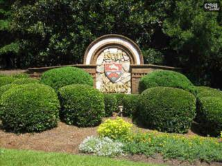 209  Canterwood Road  535, Irmo, SC 29063 (MLS #374233) :: Exit Real Estate Consultants