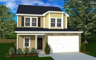 708  Blackjack Court  101, West Columbia, SC 29169 (MLS #374248) :: Exit Real Estate Consultants