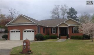 116  Menscer Drive  , West Columbia, SC 29169 (MLS #374261) :: Exit Real Estate Consultants