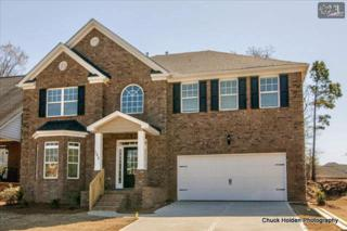 15  Hillfoots Court  117, Blythewood, SC 29016 (MLS #374264) :: Exit Real Estate Consultants