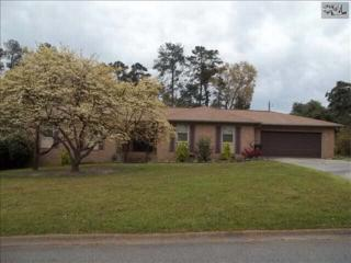272  Marabou Circle  , West Columbia, SC 29169 (MLS #374361) :: Exit Real Estate Consultants