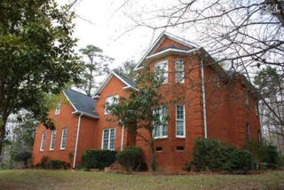 200  Williamstown Way  , Columbia, SC 29212 (MLS #374453) :: Exit Real Estate Consultants