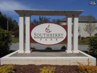 330  Southberry Way  Lot 51, Lexington, SC 29072 (MLS #374933) :: Exit Real Estate Consultants