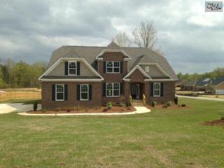 306  Grey Fox Court  6, Gilbert, SC 29054 (MLS #374981) :: Exit Real Estate Consultants