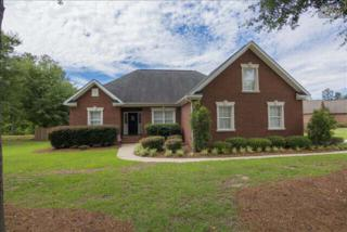 185  Peamar Drive  , West Columbia, SC 29170 (MLS #375024) :: Exit Real Estate Consultants
