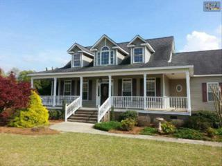104  Cobbler Lane  , Gilbert, SC 29054 (MLS #375134) :: Exit Real Estate Consultants