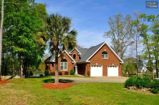 422  Creek End Circle  , Gilbert, SC 29054 (MLS #375203) :: Exit Real Estate Consultants