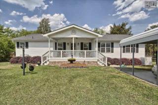 550 N Lakeshore Drive  , Gilbert, SC 29054 (MLS #375258) :: Exit Real Estate Consultants