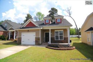 524  Cornerstone Circle  , Irmo, SC 29063 (MLS #375323) :: Exit Real Estate Consultants