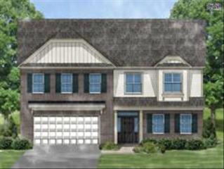 125  Scarborough Drive  Lot 1, Lexington, SC 29072 (MLS #375447) :: Exit Real Estate Consultants