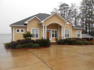 140  Bundrick Road  , Lexington, SC 29072 (MLS #375624) :: Exit Real Estate Consultants