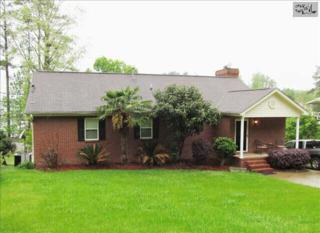 620  Newberry Drive  , Chapin, SC 29036 (MLS #375668) :: Exit Real Estate Consultants