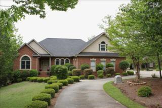 133  Hilton View Drive  , Chapin, SC 29036 (MLS #375680) :: Exit Real Estate Consultants