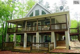 416  Rocky Ramp Drive  , Chapin, SC 29036 (MLS #375705) :: Exit Real Estate Consultants