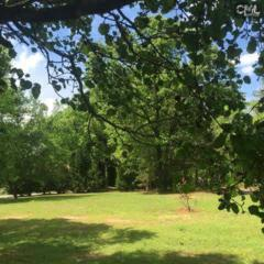 110  Winding Road  , Irmo, SC 29063 (MLS #375843) :: Exit Real Estate Consultants