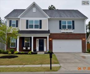 225  Bonnie View Court  , Lexington, SC 29072 (MLS #375860) :: Picket Fence Realty
