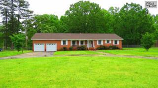 120  Beulah Church Road  , Gilbert, SC 29054 (MLS #375915) :: Exit Real Estate Consultants