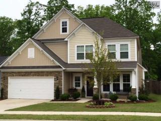 250  Hawkins Creek Road  , Blythewood, SC 29016 (MLS #375935) :: Exit Real Estate Consultants
