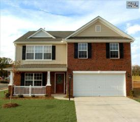 515  Eagles Rest Drive  0104, Chapin, SC 29036 (MLS #375959) :: Exit Real Estate Consultants