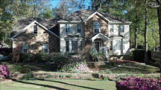 101  Tanners Mill Road  , Chapin, SC 29036 (MLS #376018) :: Exit Real Estate Consultants