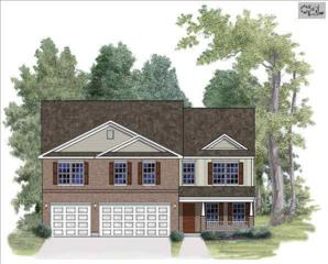 535  Eagles Rest Drive  0107, Chapin, SC 29036 (MLS #376065) :: Exit Real Estate Consultants