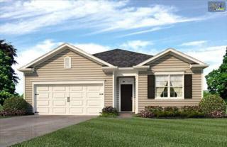 2311  Chipmunk Court  10, West Columbia, SC 29169 (MLS #376274) :: Exit Real Estate Consultants