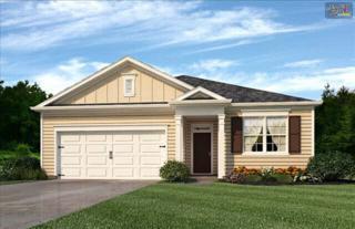2307  Chipmunk Court  11, West Columbia, SC 29169 (MLS #376281) :: Exit Real Estate Consultants