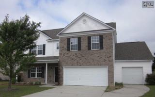 405  Indigo Ridge Drive  , Columbia, SC 29229 (MLS #376313) :: Exit Real Estate Consultants