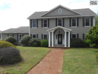 9  Robin Lynn Lane  , Irmo, SC 29063 (MLS #376362) :: Exit Real Estate Consultants