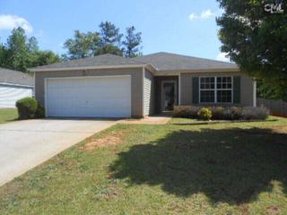 117  Autumn Woods Drive  , Irmo, SC 29063 (MLS #376373) :: Exit Real Estate Consultants