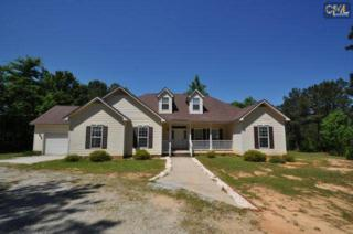 312  Strother Road  , Blair, SC 29015 (MLS #376822) :: Exit Real Estate Consultants