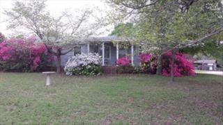 137  Robert Dowd Drive  , Gaston, SC 29053 (MLS #376830) :: Exit Real Estate Consultants